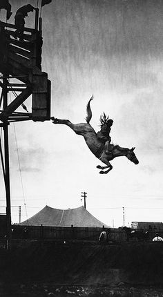 Sonora Carver with the west's first diving horse, trained in the United States and shown at the Calgary Exhibition and Stampede. Believed to be in 1927 Photographer, Oliver, W.J., Calgary, Alberta The horse dived about 50 feet into a tank of water about 10 feet deep and Miss Carver stayed on the horse during all of the jump. She lost her eyesight in 1931 when her horse landed badly, but by 1932 was again diving horses. She retired in 1942 and died in 2003 at the age of 99.