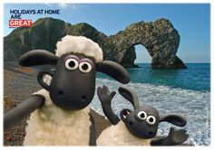 Shaun and Timmy love to be beside the sea. Here they are at Durdle Door in beautiful Dorset.