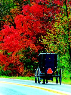 Ohio's Amish Country in the fall, with all of the colors, literally resembles a painti#Ohio #Tourism