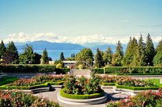 Tour around UBC for interesting and sustainable Architectures and for a youthful vibe | Stop by at Rose Garden near Flag Pole Plaza to enjoy the beautiful scenery and the garden itself