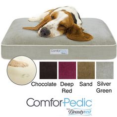 @Overstock - Whether your pet is young or old, give them a comfortable place to rest. This supportive orthopedic pet bed by Simmons Comforpedic is built just like your favorite mattress, giving your furry friend the luxuries they deserve at any stage in their life.http://www.overstock.com/Pet-Supplies/Simmons-Comforpedic-Deluxe-Orthopedic-Pet-Bed/5877411/product.html?CID=214117 $92.99