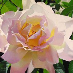 Rose pâle aux pétales opalines