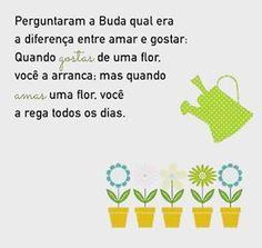 #segundona #boasemana #vamosaluta #plantarparacolher #pazdeespirito #amor #caridade #amizade #fé #foco 🙏💐✔️
