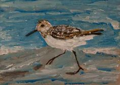 one a day: sandpiper  http://4oneaday.blogspot.com/2013/04/sandpiper.html