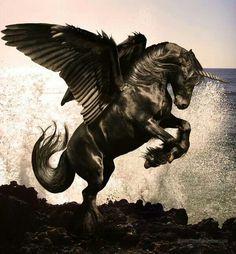 #horses #unicorn #pegasus #fantasy