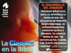 Askenaz (página oficial) Hasta la segunda mitad del siglo 18, la embriología era más una materia de especulación que de conocimiento. Sin embargo Dios revela en su palabra como es que se construye el embrión.