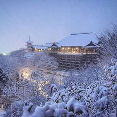 Temperatures reached a record low for this winter in Kyoto, which meant the city was blanketed in white powder. Enjoy the stunning photos.