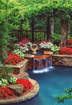 an amazing backyard garden pond