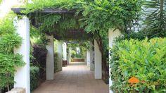 Natural green live entrance to Urb. El Polo #Sotogrande SLA2034