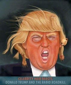 Donald TrumpMore Pins Like This At FOSTERGINGER @ Pinterest