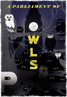 Woop Studios P - a Parliament of Owls