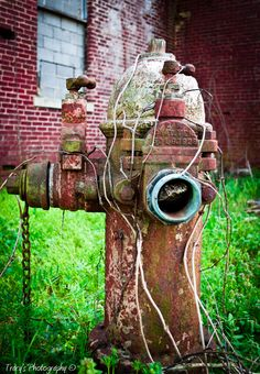 1928 Fire Hydrant
