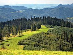 Turyści polecają - te noclegi są najlepsze w Beskidach: http://www.nocowanie.pl/jakie-noclegi-w-beskidach-sa-najchetniej-polecane-przez-turystow.html #Beskidy #góry #mountains