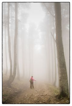 "Photograph Perdida en la nieba / Lost in the fog by ILM ""Ñ"" on Camino Trail, The Camino, St James Way, Film Inspiration, Once In A Lifetime, Adventure Is Out There, Pilgrimage, Places To See, Beautiful Places"