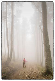 Recorrer el Camino de Santiago de Compostela.  Maybe this will be me someday.  Camino de Santiago