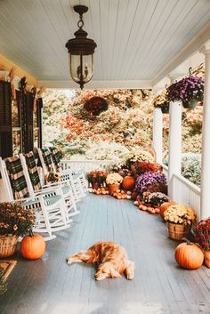 fall decor Fall Porch Decorating with Sunbrella- Classy Girls Wear Pearls