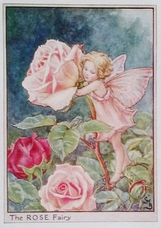 Rose Flower Fairy Vintage Print, c.1950 Cicely Mary Barker Book Plate Illustration