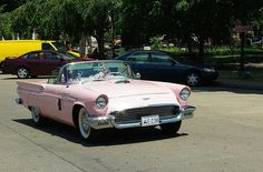 Thunderbird....pretty in pink!!! Bebe'!!! Love, love, love!!!