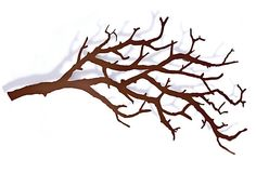 One Kings Lane - The Whimsical Wall - Large Tree Branch Hooks, Bronze