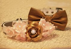 Gold and peach wedding Dog Collars  Pet wedding accessory, Vintage Wedding    Floral dog collar • Collar Material: Leather  • Collar Color: White  •