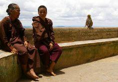 Two nuns and macaque in Buddhist monastery on the top of Mount Popa (Taung Kalat), Myanmar (Burma) (Darius Travel Photography) Tags: pentax barefoot myanmar birma mountpopa     descalas  pentaxk100dsuper      taungkalat   mianmaras