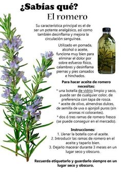 Herbal Remedies Natural Home Remedies Health Tips Health And Wellness Health Fitness Health And Nutrition Belleza Natural Holistic Medicine Herbal Medicine Natural Health Remedies, Herbal Remedies, Cold Remedies, Medicinal Plants, Natural Medicine, Natural Healing, Holistic Healing, Natural Oil, Health Tips