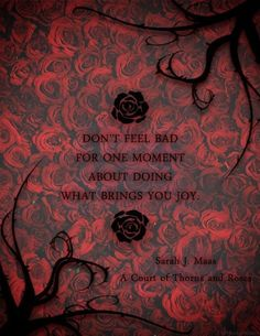Image result for sarah j maas a gift all of it
