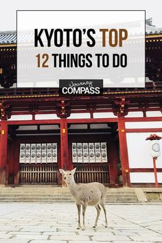 Kyoto, Japan, The Top 12 Things To Do & Attractions Not To Miss in Asia's most romantic culture travel destination. A must-add for your bucket lists. Romantic Vacations, Romantic Getaway, Romantic Travel, Japan Train, Singles Holidays, Japan Travel Tips, Travel Europe, Travel Packing, Single Travel