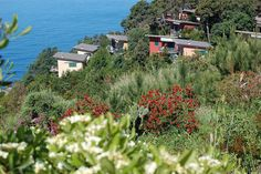 Relaxing holidays with panoramic view over the sea of the #cinqueterre