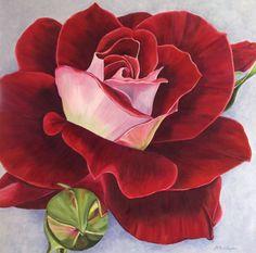 Rode fluwelen roos in acryl geschilderd