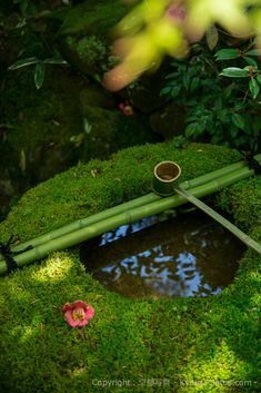 Japanese Garden at Daitokuji Temple / Hundreds of Beautiful Kyoto Photos http://kyoto-photos.com