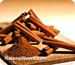 Cinnamon beats Alzheimers increase muscle website
