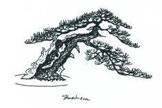 Bonsai Styles: Slanting – Shakan