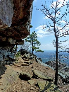 Rim Trail on Mount Nebo---Dardanelle, Arkansas