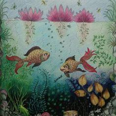 Lago com peixes, floresta encantada e jardim secreto, Joahnna Basford, livro de colorir