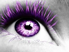 Our site brings you the latest information on purple contacts. It's a brief and straightforward guide on purple contacts, and it's Free! Purple Love, All Things Purple, Purple Lilac, Shades Of Purple, Deep Purple, Purple Peacock, Purple Style, 50 Shades, Pretty Eyes