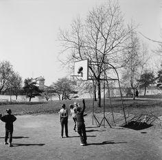 Pojat pelaavat koripalloa Toivo Kuulan puistossa. - Finna -...
