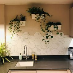 Kitchen Backsplash with 2 Different Tiles . Kitchen Backsplash with 2 Different Tiles . Marble Hexagon Tiles In the Kitchen with Plant Wall Glass Tile Backsplash, Kitchen Wall Tiles, Kitchen Backsplash, Marble Tiles, Kitchen Floor, Backsplash Wallpaper, Backsplash Ideas, Tile Ideas, Room Kitchen