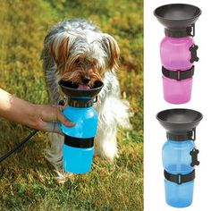 Pet Cat Dog Travel Mug Blue Pink Color Water Bowl Bottle Outdoor Walking Hiking Gift is Worth Buying - NewChic Mobile.
