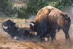 Dean Noel's unique wildlife art is sought after by many art collectors across the country. Dean Noel's art range from wildlife, African, western, and landscape artwork. Big Boy Games, Shadow Creatures, Buffalo Painting, Rain Cape, Landscape Artwork, Wildlife Art, Western Art, Bison, Pyrography