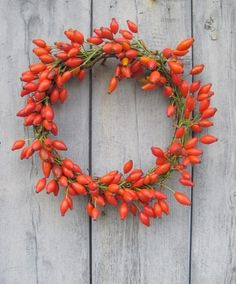 Hip Wreaths From The Hedgerow Rose hip wreath by The Blue Carrot, UK. GardenistaRose hip wreath by The Blue Carrot, UK. Blue Carrot, Christmas Wreaths, Christmas Decorations, Christmas Door, Holiday Decor, Wreath Drawing, British Flowers, Natural Christmas, Autumn Inspiration