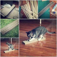 DIY Self-Petting Station for Cats   LovePetsDIY.com
