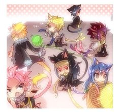 Fairy Tail Cats