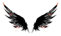 Wings Background Images For Editing, Photo Background Images, Photo Backgrounds, Raven Tattoo, Feather Tattoos, Body Art Tattoos, Angel Wings Art, Angel Wings Wall Decor, Wings Wallpaper