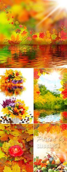 Őszi Rasztergrafika - őszi levelek, a víz és a betakarítás.  színes őszi