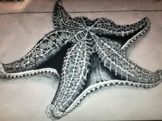Giant Starfish by Mermaid0616