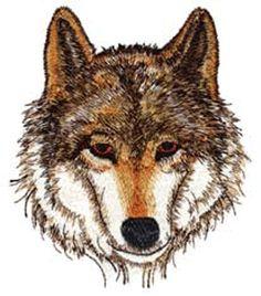 wolvenhoofd - Google zoeken