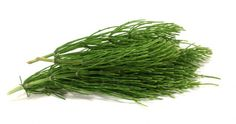 Horsetail - Most useful medicinal herbs Chip Mug, Herbs List, Organic Acid, Tone It Up, Medicinal Herbs, Diet Menu, Herbal Medicine, Natural Remedies, Health