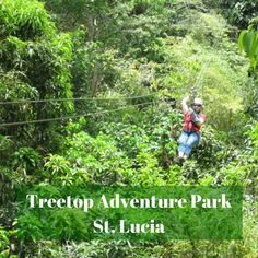 Explore beautiful St. Lucia on a zip line through the rainforest. Treetop Adventure Park is a great cruise excursion destination too.