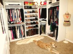 Must have a huge walkin closet in our Home that we will be purchasing next year  :-) MUST MUST MUST HAVE MR.JOHN KNIGHT SR... hint hint...!!!